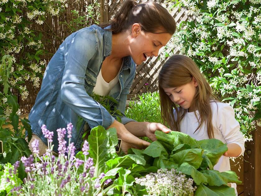 Madre e hija cultivando